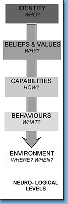 Neuro-logical Levels